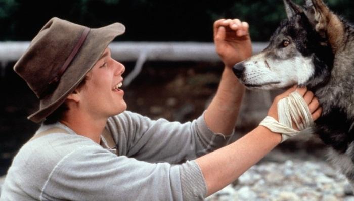 10 отличных фильмов про животных