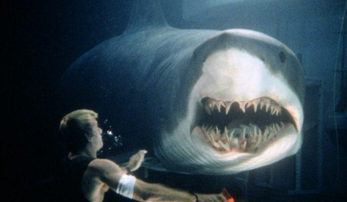5 художественных фильмов про акул