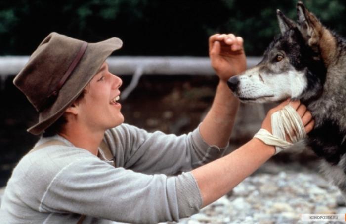 5 фильмов про волков